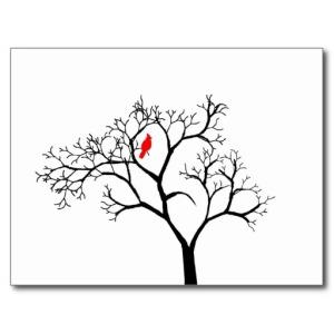 cardinal_red_bird_in_snowy_winter_tree_post_card-rb5bba251b68440c0b9163bf05e40fce3_vgbaq_8byvr_512